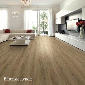 Biltmore Lenoir