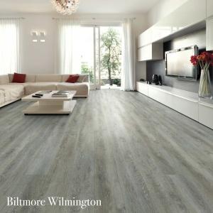 Biltmore Wilmington