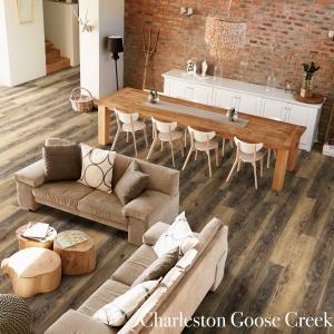 Charleston Goose Creek