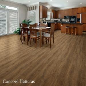 Concord Hatteras